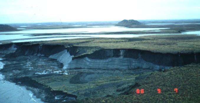 Massive ground ice near Tuktoyaktuk, NWT